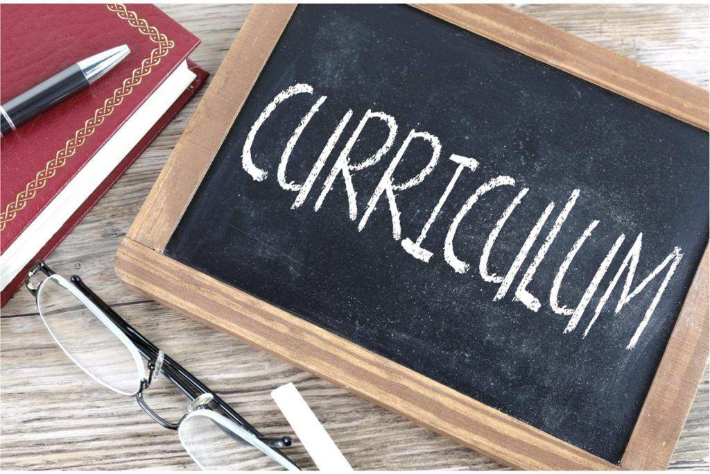 Características de este formato curriculum mixto